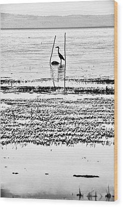 Heron Wood Print by Okan YILMAZ