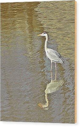 Heron Wood Print by Sharon Lisa Clarke