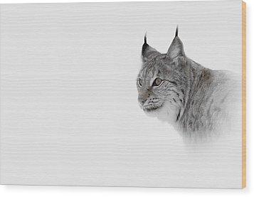 Hi Key Lynx Wood Print