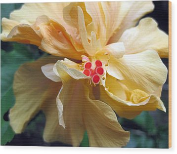 Hibiscus Dancer IIn Yellow Wood Print