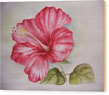 Hibiscus Flower Wood Print by Draia Coralia