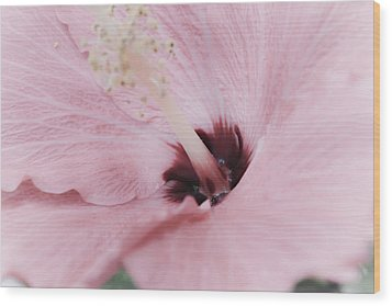 Wood Print featuring the photograph Hibiscus Moments by Janie Johnson