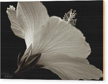 Hibiscus Wood Print by Raffaella Lunelli