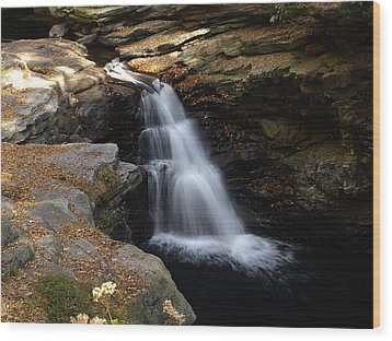 Wood Print featuring the photograph Hidden Falls by Raymond Earley