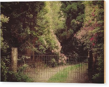 Wood Print featuring the photograph Hidden Garden by Marilyn Wilson