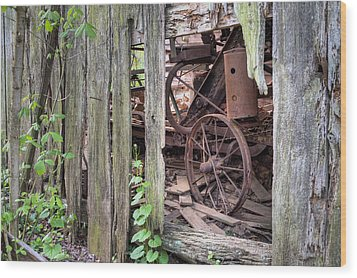 Hidden Treasure Wood Print by JC Findley
