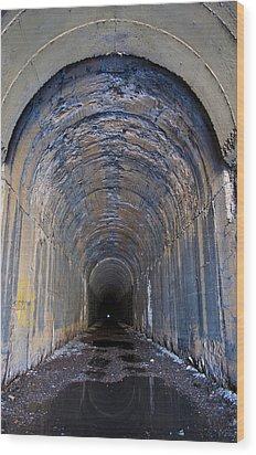 Hidden Tunnel Wood Print by Fran Riley
