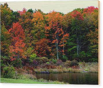 Hidden Valley Lake Wood Print by Karen Wiles