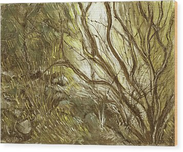 Hideaway Plants In Brown Yellow And Green Branches Leaves Trunks Stones Wood Print by Rachel Hershkovitz