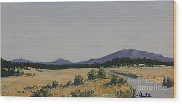 High Land Road Wood Print by Adam Smith
