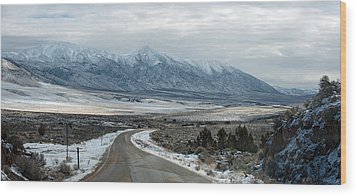 Wood Print featuring the photograph Highway 447 by Gary Rose