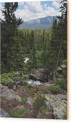 Hiking In Colorado Wood Print
