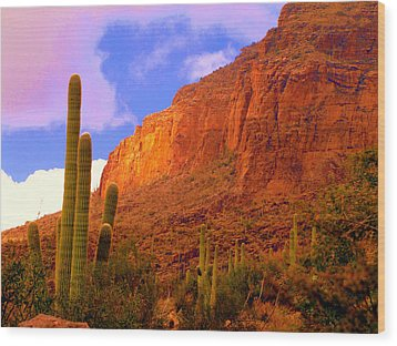 Hiking The Canyon Wood Print