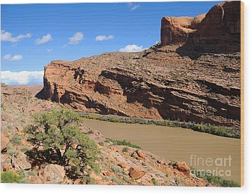 Hiking The Moab Rim Wood Print by Gary Whitton