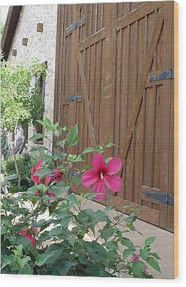 Hill Country Hibiscus Wood Print by Elizabeth Sullivan
