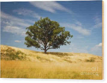 Hill Top Beauty Wood Print by Scott Pellegrin