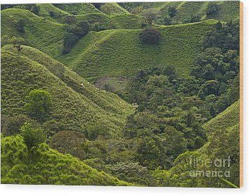 Hills Of Caizan 2 Wood Print by Heiko Koehrer-Wagner