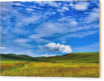 Hills Of Wheat In The Palouse Wood Print by David Patterson