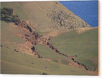 Hillside Erosion Caused By Run Wood Print by Jason Edwards