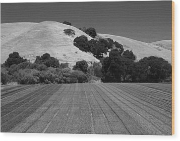 Wood Print featuring the photograph Hillside Farmland by Kathleen Grace