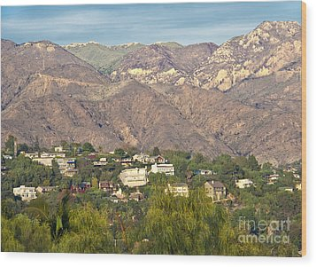 Hilly Residential Area Wood Print by David Buffington