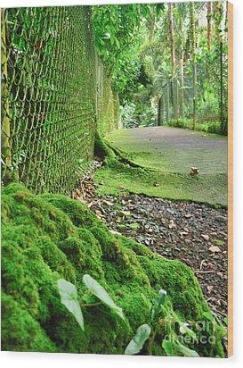 Hilo Garden Wood Print by Joe Finney