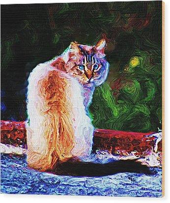 Wood Print featuring the digital art Himalayan Cat by John  Kolenberg
