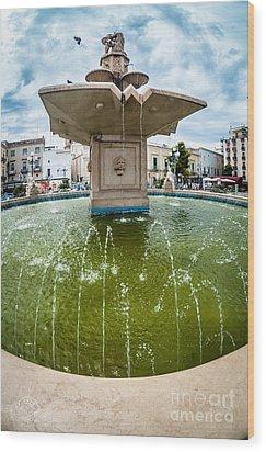 Historic Fountain Wood Print by Sabino Parente
