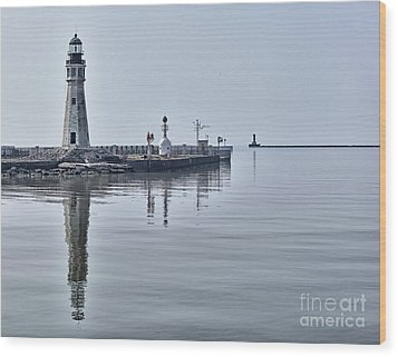 Historic Lighthouse On Lake Erie Wood Print by Phil Pantano
