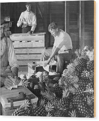 Historic Pineapple Factory - Florida - C 1906 Wood Print by International  Images