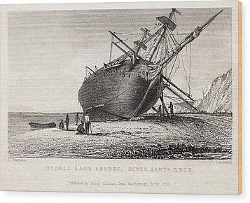 Hms Beagle Ship Laid Up Darwin's Voyage Wood Print by Paul D Stewart