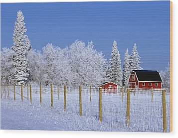 Hoarfrost On Trees Around Red Barns Wood Print by Mike Grandmailson