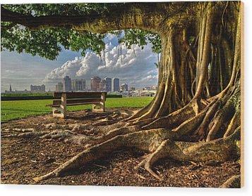 Hobbit Eyeview Wood Print by Debra and Dave Vanderlaan