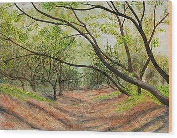 Wood Print featuring the painting Hobo Jungle by Teresa Beyer