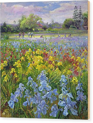 Hoeing Team And Iris Fields Wood Print by Timothy Easton