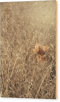 Hold Me Tenderly Wood Print by Laurie Search