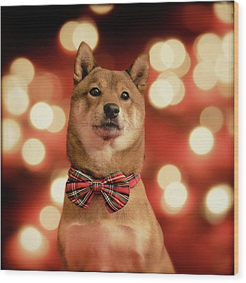 Holiday Outfit Wood Print by DancingShiba