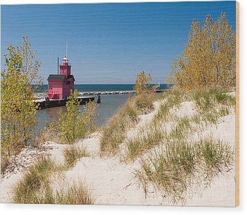 Holland Mi Lighthouse Wood Print by Larry Carr