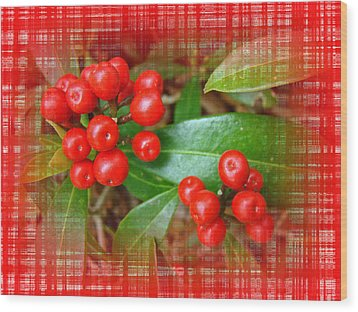 Holly Berries Wood Print by Mother Nature