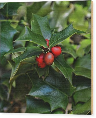 Holly Berries Wood Print by Rick Friedle