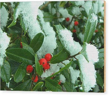 Holly In Snow Wood Print by Sandi OReilly