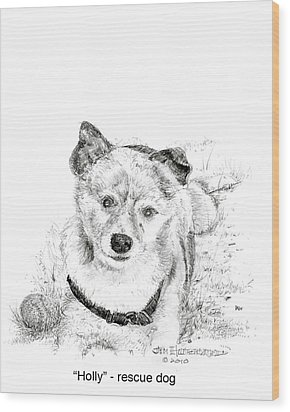 Wood Print featuring the drawing Holly Rescue Dog by Jim Hubbard