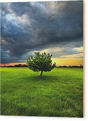 Home Alone Wood Print by Phil Koch