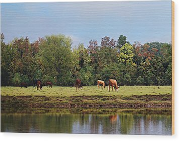 Home On The Range Wood Print by Susan Bordelon