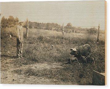 Homer Hunt Tending Pigs, Rockcastle Wood Print by Everett