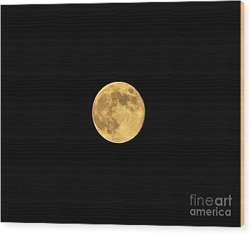 Honey Moon Wood Print by Al Powell Photography USA