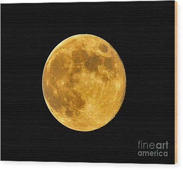 Honey Moon Close Up Wood Print by Al Powell Photography USA