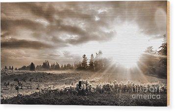 Hope II Wood Print by Rory Sagner