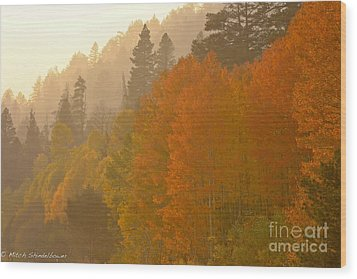 Wood Print featuring the photograph Hope Valley by Mitch Shindelbower