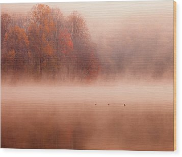 Hopewell Lake, French Creek State Park Wood Print by Michael Lawrence Photography